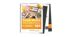 Download the resource: Social Media Reporting Toolkit for Professionals.